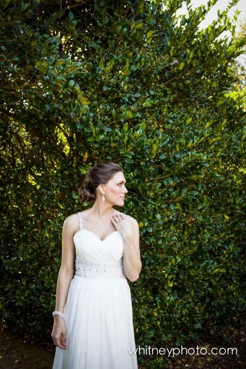 Jessica Travis Daniel Stowe Botanical Gardens Charlotte Wedding Photographers Charlotte