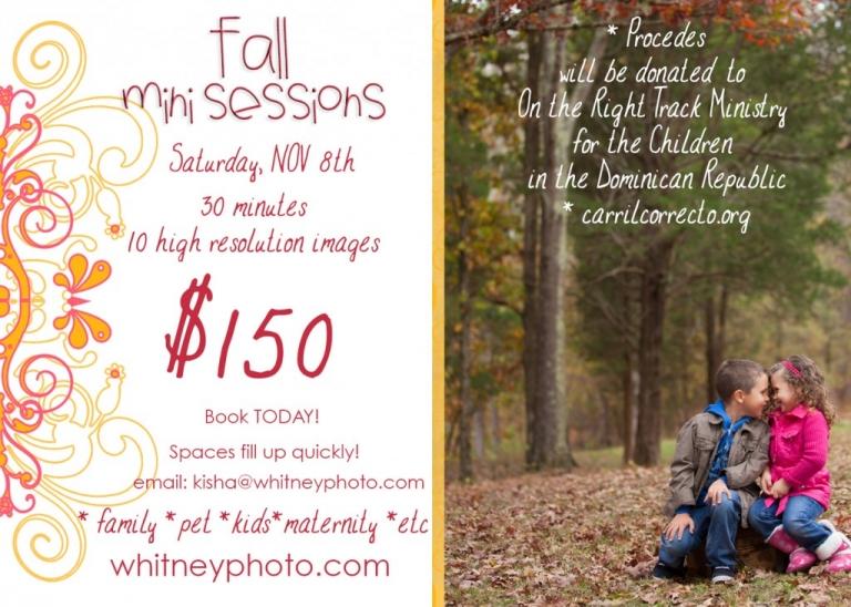 MINI Sessions Fall 2014
